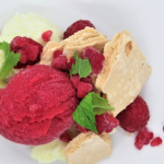 Berry Sorbet and Chocolate Mousse photo