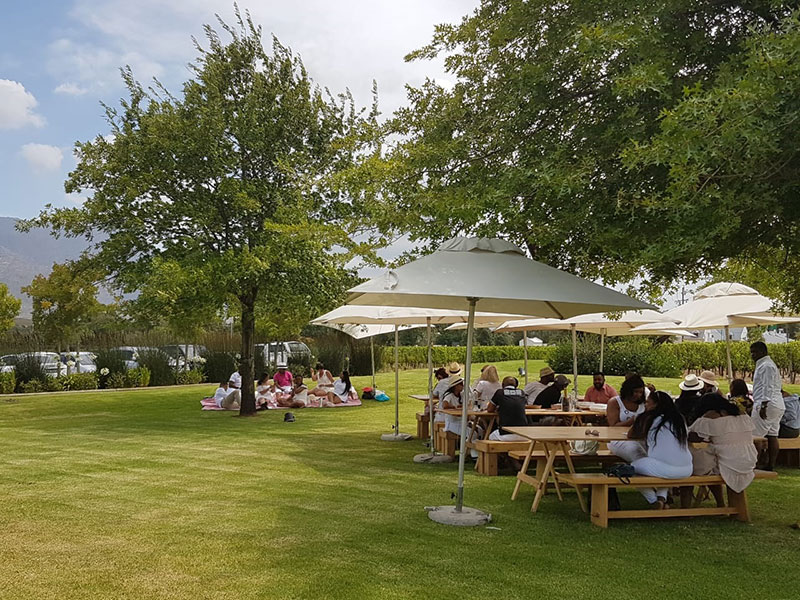 Franschhoek Summer Wines 2019 Delivers Class In A (chilled) Glass! photo