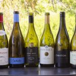In Praise of Pinot Noir photo