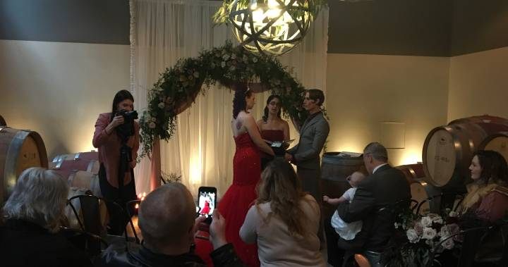 Nineteen Okanagan Couples Get Hitched At Free All-day Wedding Event photo
