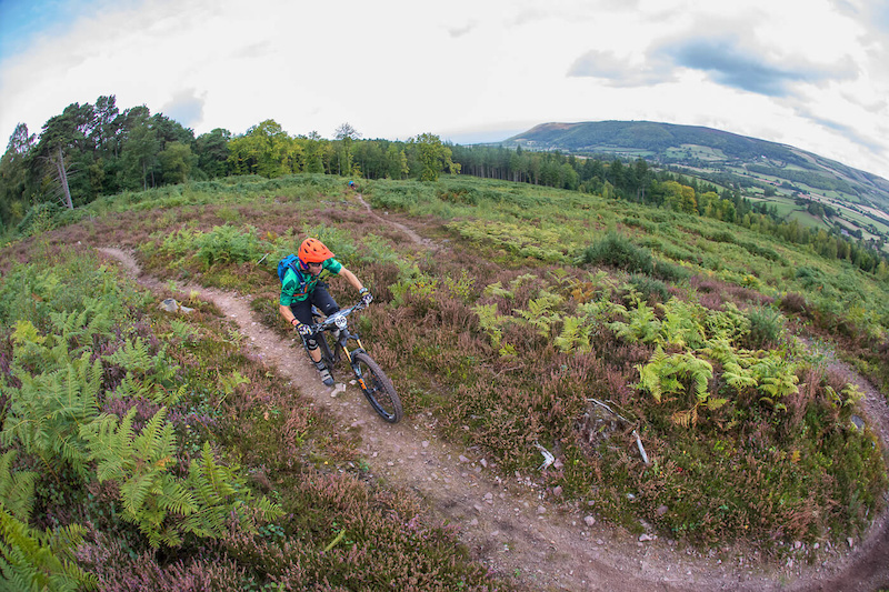 Details Announced For The 2019 Ex Enduro photo