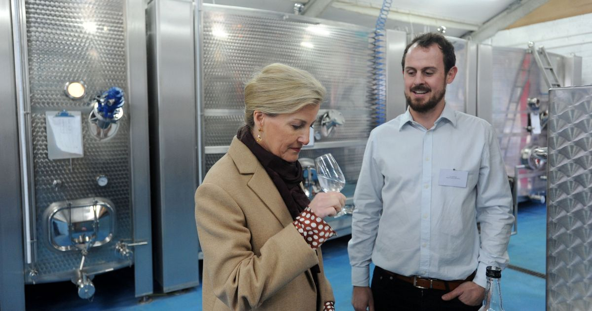 You Can Taste Test Every Gin At Expanded Silent Pool Distillery photo