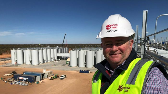 Chinese Winemaker Weilong Begins First Australian Harvest Of Its Export-only Wine photo