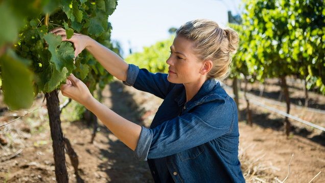6 Top Drops By Female Winemakers To Celebrate International Women's Day photo