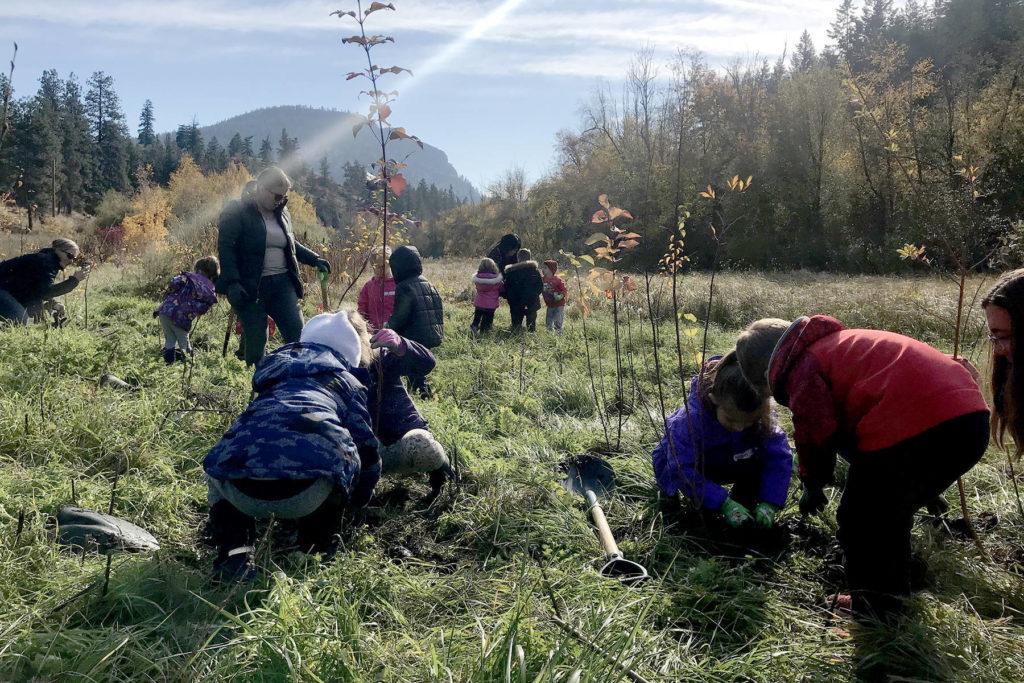 Summerland Winery Works To Protect Habitat photo