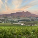 Simonsig Wines And Asian Flavours Work Perfect Together photo