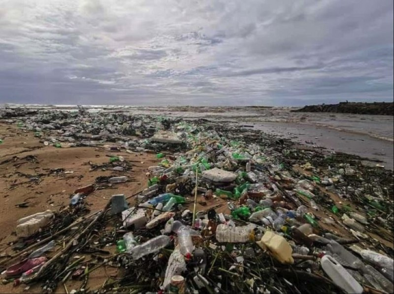 Coca-cola Beverages South Africa Organises Emergency Beach Clean-up photo