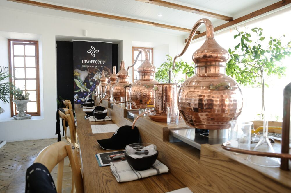 GinTasting1 Discovering Inverroche Liqueur at Cape Towns Best Kept Secret