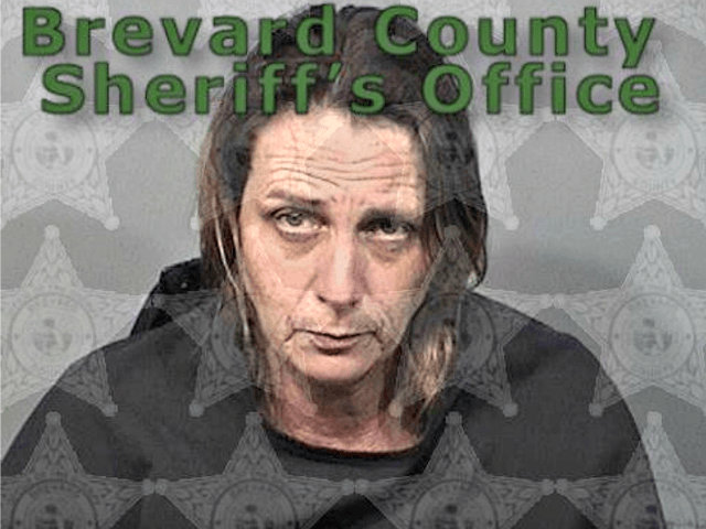 Police: Florida Woman Shoots Partner In Booze-filled Snoring Dispute photo