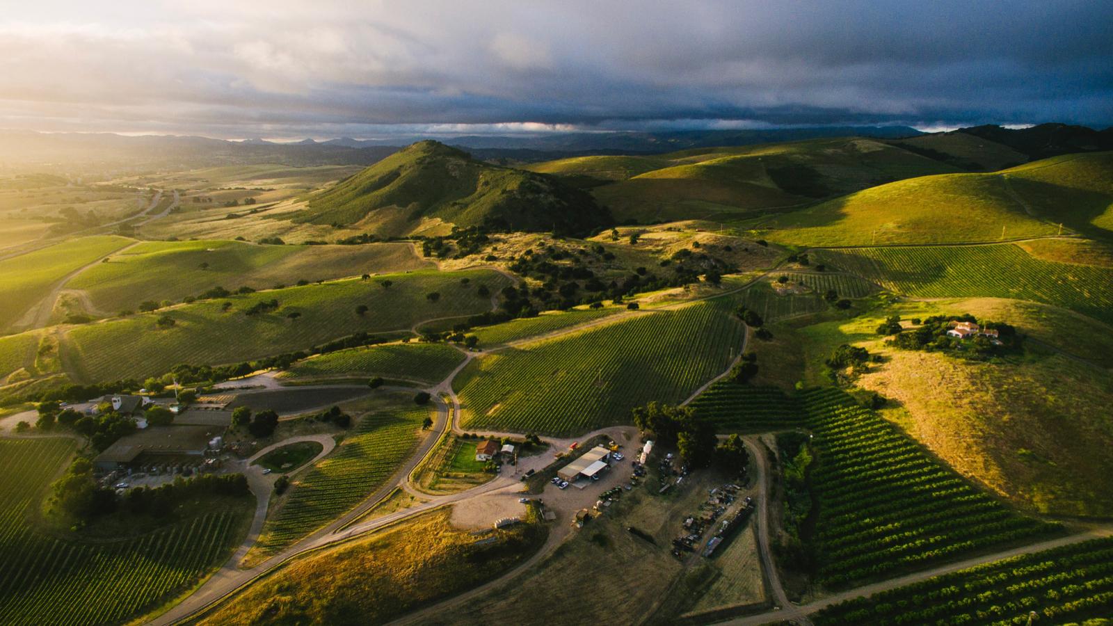 Vintage Wine Estates Buys California Pinot Noir Specialist Laetitia photo