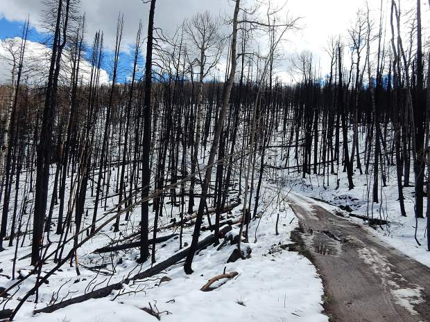 $1.35 Million Raised For Flood Mitigation Projects In Lake Christine Fire Burn Scar photo