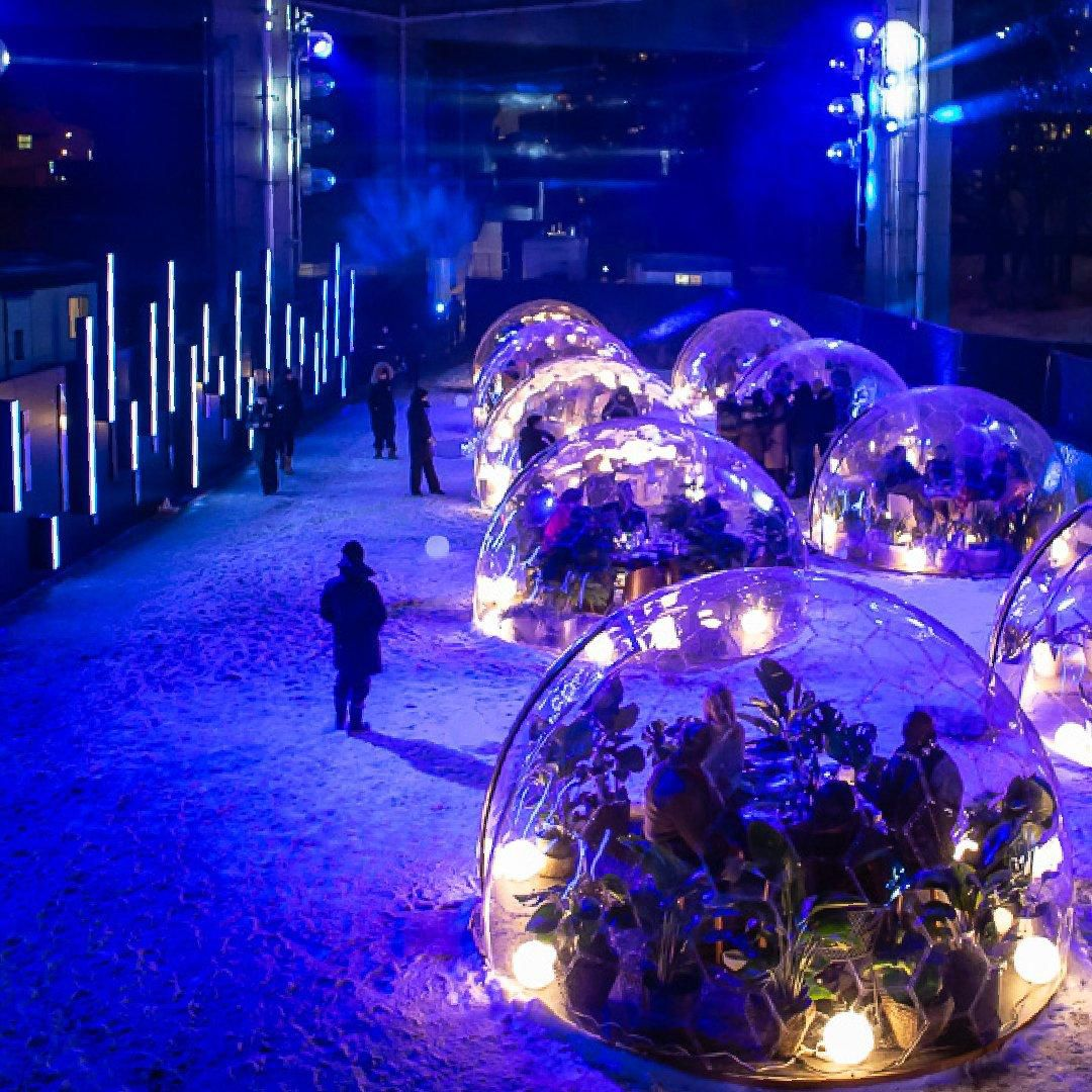 A Three-course Meal Under The Gardiner? It?s Served Inside A Life-sized Terrarium photo