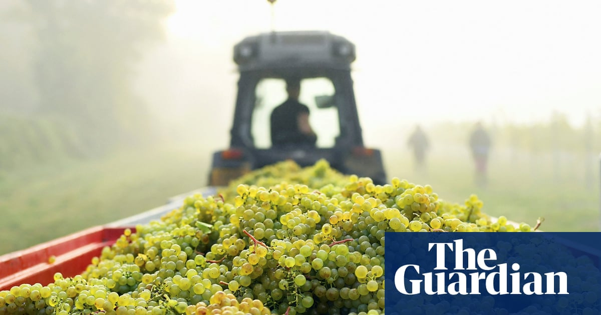 Britons Drank Record Amount Of Homegrown Sparkling Wine In 2018 photo