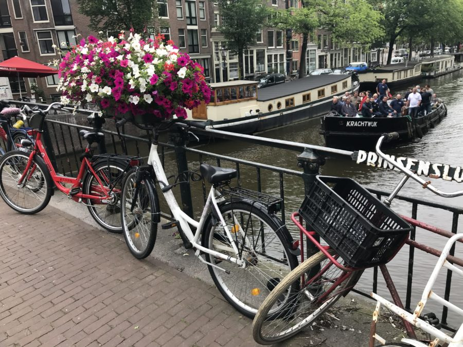48 Hours In Amsterdam: Seven Places You Have To Visit On Bike In Westerpark And Beyond photo