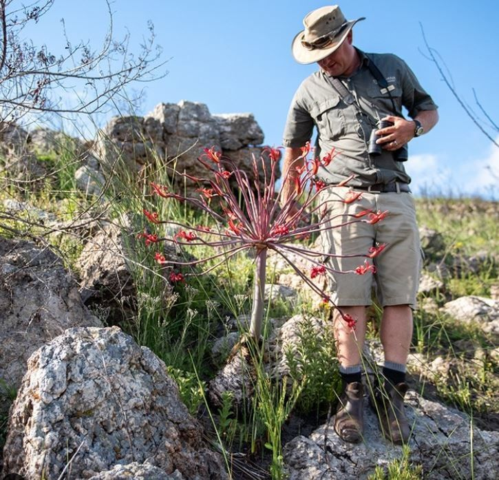 Gondwana Game Reserve Launches New Fynbos Conservation Experience For Guests photo