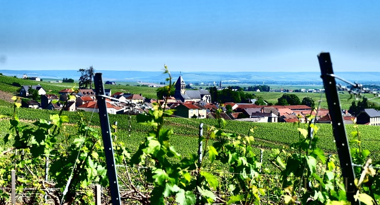 Best Destinations For Wine Lovers In Europe photo