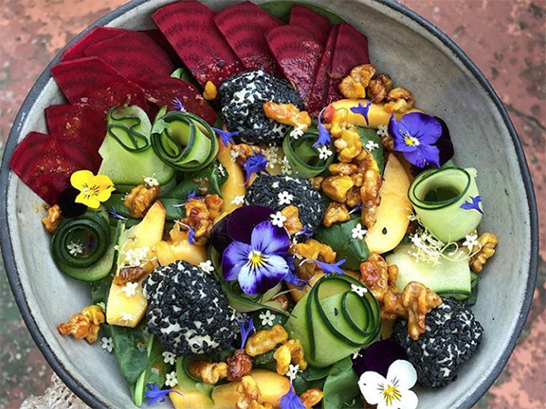 Review: Port Elizabeth's Kindred Kitchen Is Vegan Heaven photo