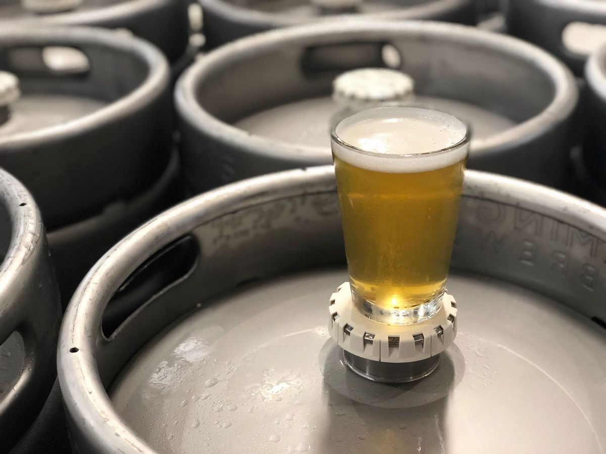 North Qld Craft Brewers Collaborate To Make The Ultimate Tropical Beer photo