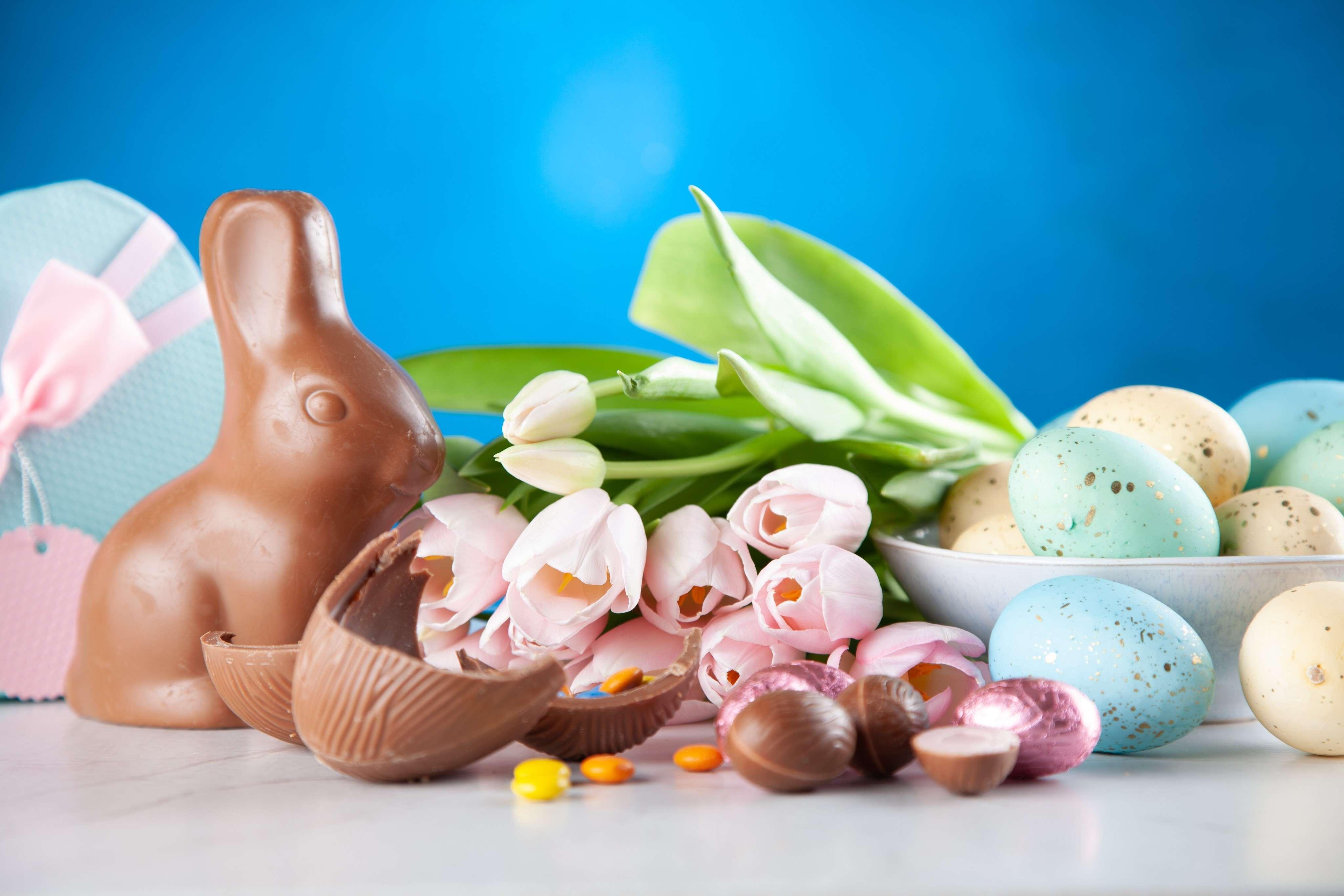 Easter Weekend Activities In Halifax photo