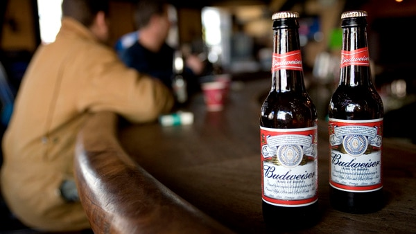 Ab Inbev Looks To Launch Two Non-alcoholic Beers In Next 3 Months photo