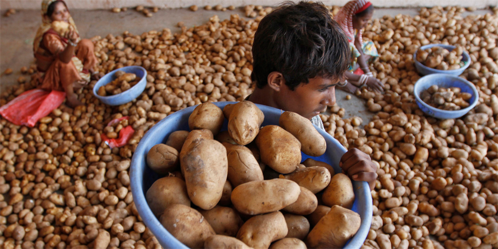 The R2 Trillion Owner Of Lay's Chips Is Suing Small Indian Farmers For Growing A Certain Type Of Potato photo