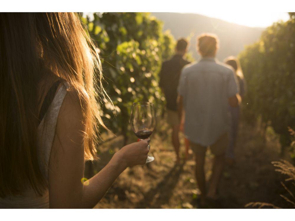 How To Plan An Okanagan Wine Tour photo