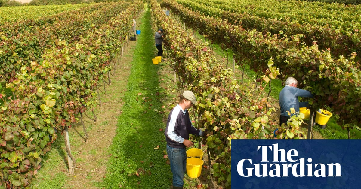 Is English Wine Becoming Hip? photo