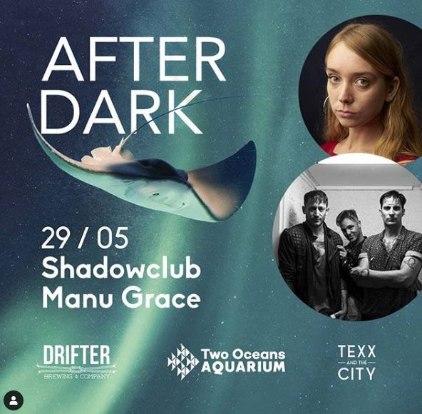 Two Oceans Aquarium To Host 8 Bands In 2019 After Dark Concert Series photo