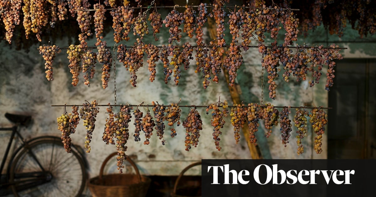 There's More To Wine Than Terroir photo