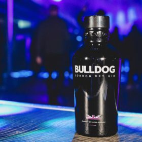 Bulldog Gin To Sponsor Field Day Festival Stage photo