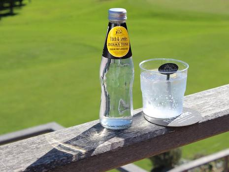 What To Expect At 'the Fitch & Leedes Gin And Tonic Festival' On Saturday photo