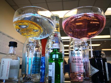 Gin & Tonic's Link To Malaria photo