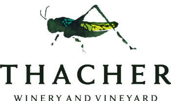 Thacher Winery Names Daniel Callan Assistant Winemaker photo