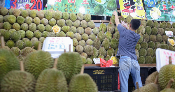 Durian Prices In Singapore Plunge While Quality Surges, photo