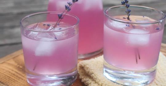 How To Make Lavender Lemonade To Help Relieve Headaches And Anxiety photo