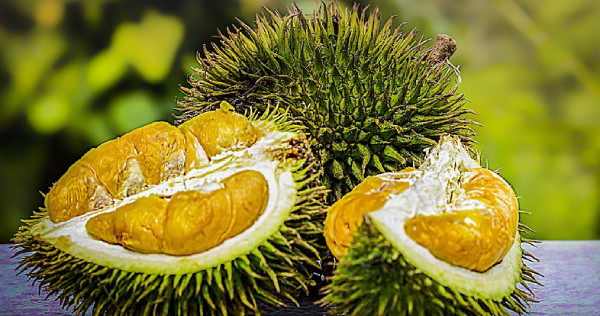 Durian Delivery Singapore Price Guide: Same-day Delivery? No Problem!, photo