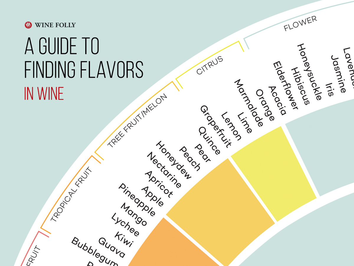 What Am I Tasting? How Finding Wine Flavors Can Change Your Life photo
