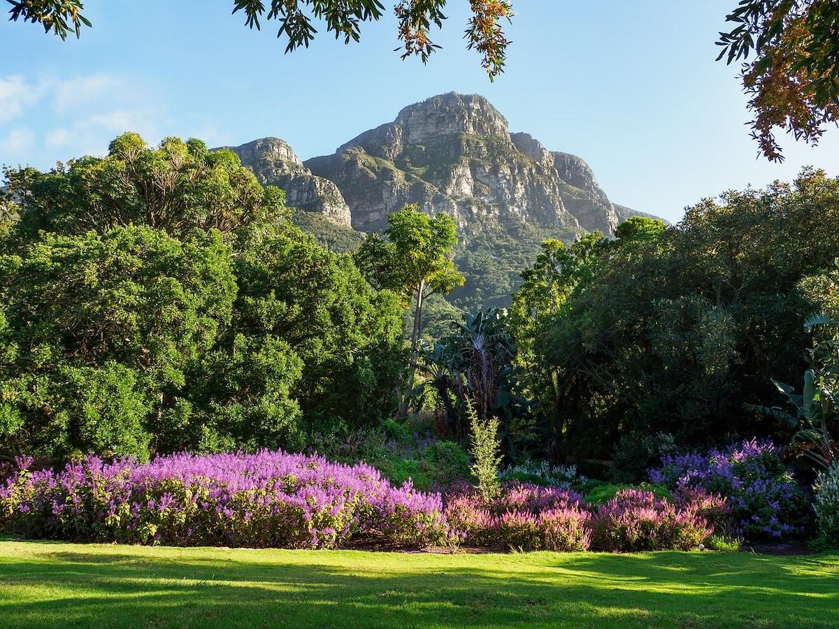 15 Best Forest Wedding Venues Cape Town photo