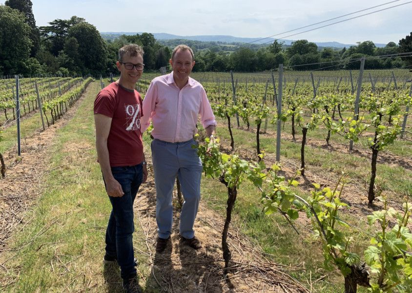 Vineyard Is Set To Get A Tasting Room, Petworth Mp Discovers photo
