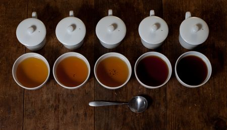 thumb ADV 01AdvancedCupping 870X500 What Is Tea Cupping And Why Is It Important?