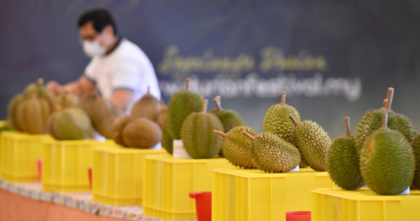 How To Choose A Durian, According To Durian Experts, photo