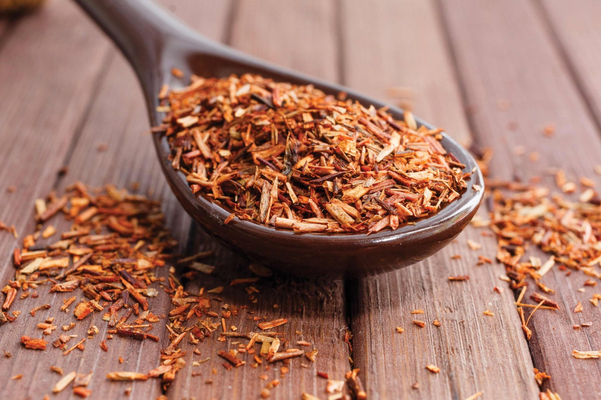 Examples Of Rooibos Business Ideas photo