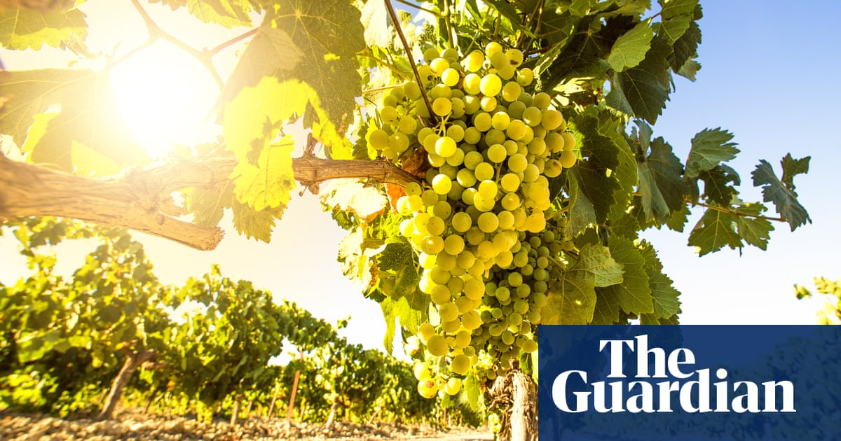 Make A Clean Break With Natural Wines photo