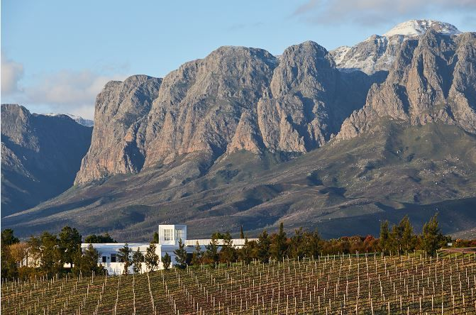 Vergelegen Named Best Winery On The African Continent photo