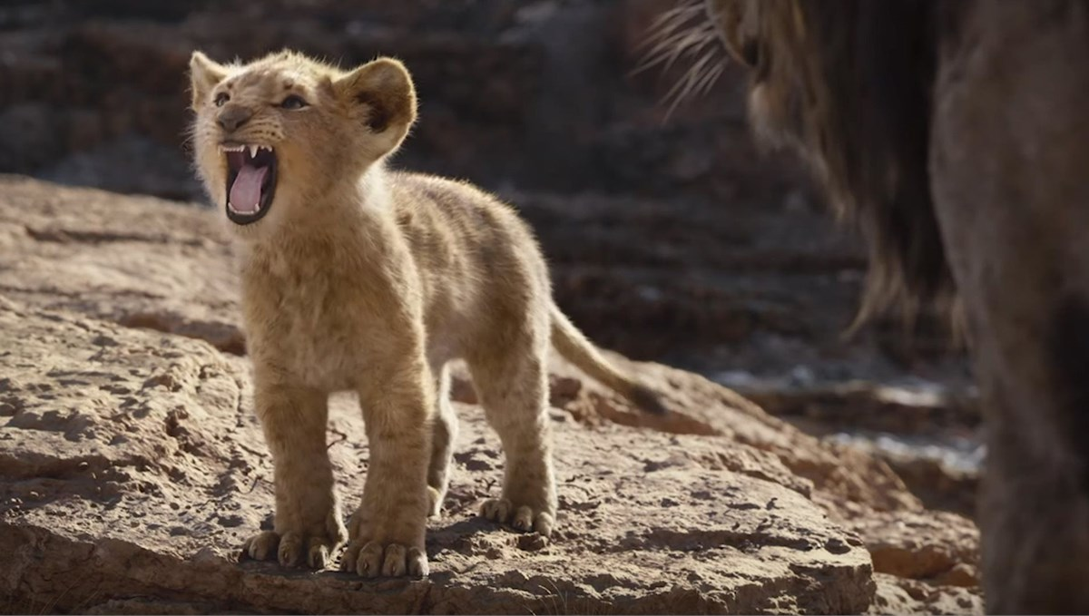 The Lion King Roars To Life On The Big Screen In A Whole New Way photo