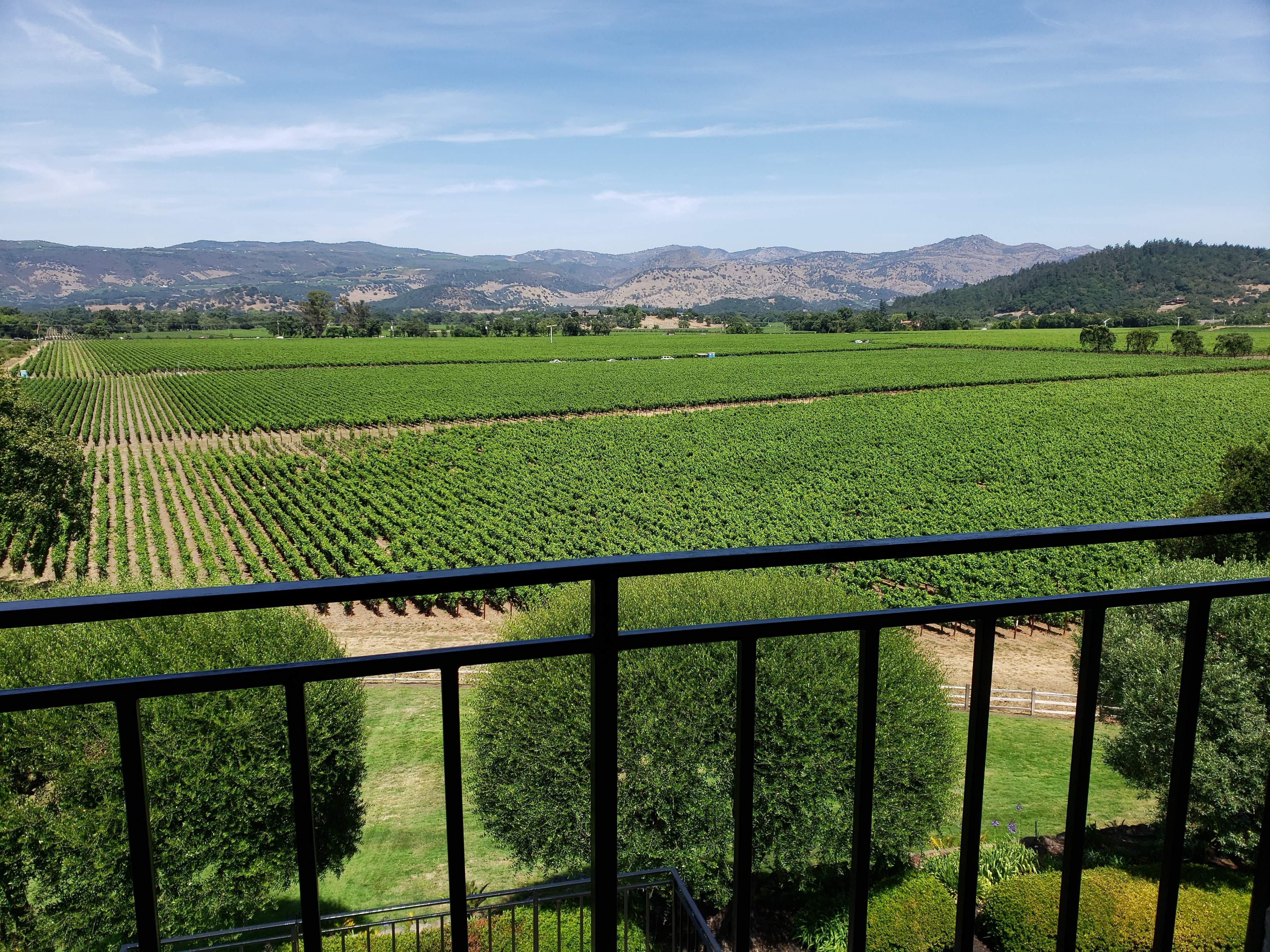 Ftv Tasting Notes: Far Niente Winery photo