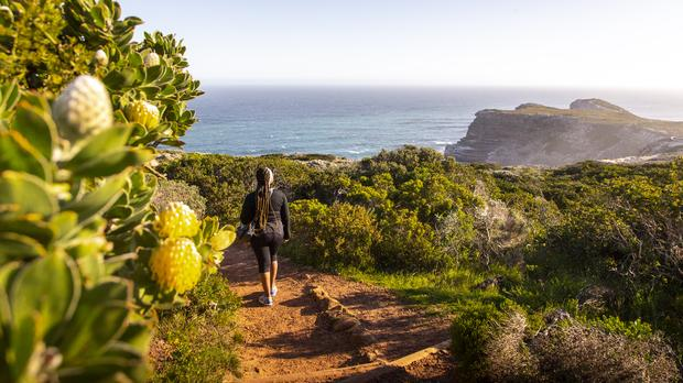 5 Trails To Try At Cape Point Nature Reserve photo