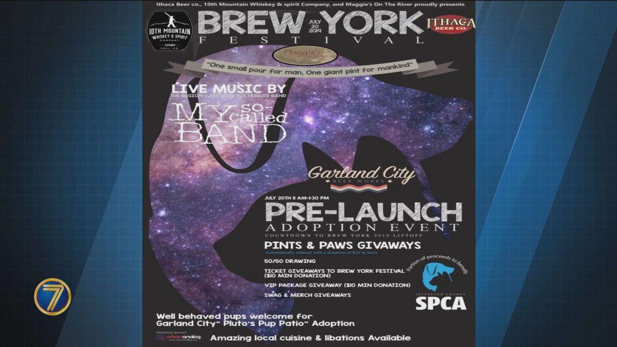 Spca Adoption Party To Help Kick Off Brew York Festival photo