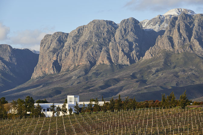 Vergelegen Voted Best Wine Estate In Africa photo