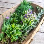 How To Grow And Use Fresh Herbs At Home photo
